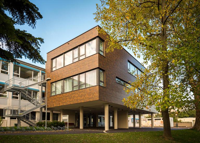 Holz-Zubau NMS und PTS Rosental